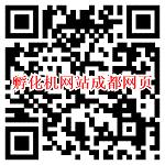 手机访问孵化机网站成都网页图片
