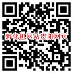 微信打开孵化机网站贵阳网页