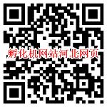 微信打开孵化机网站河北网页