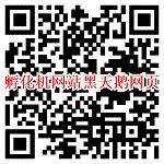 微信打开孵化机网站黑天鹅网页