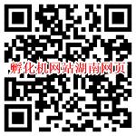 微信打开孵化机网站湖南网页