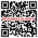 微信打开孵化机网站陕西网页