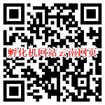 微信打开孵化机网站云南网页