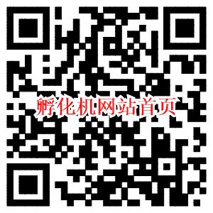 孵化机网站二维码